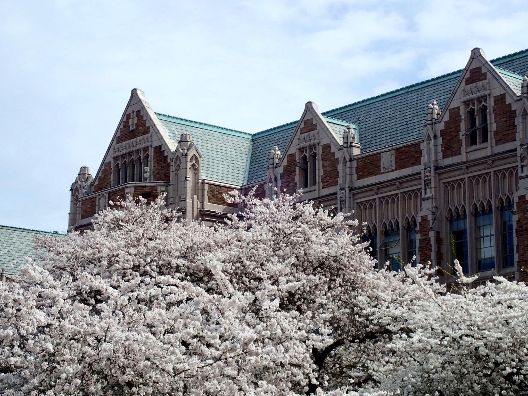 Pulmonary, Critical Care and Sleep Medicine | University of Washington