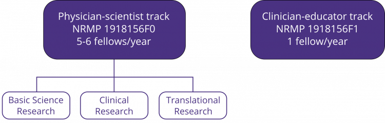 Pulmonary and Critical Care Fellowship Tracks